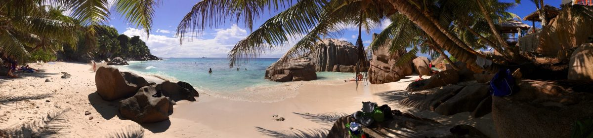 Seychelles by Pole turtles S79CI & S79W
